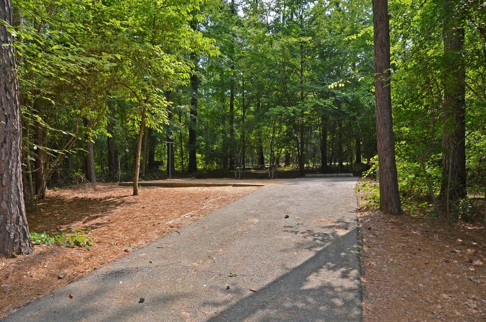 McKinney Campground Site 69