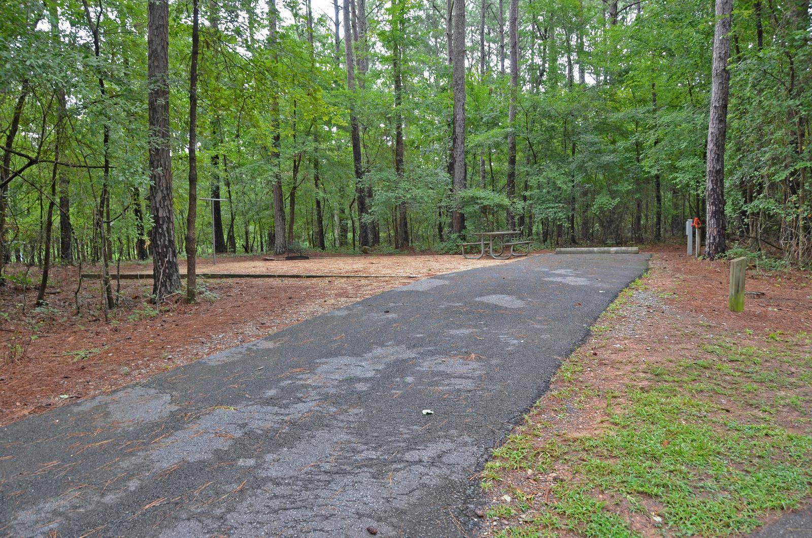 McKinney Campground Site 71