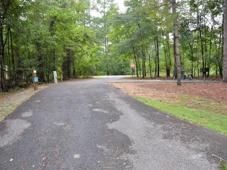 McKinney Campground Site 73.McKinney Campground Site 73