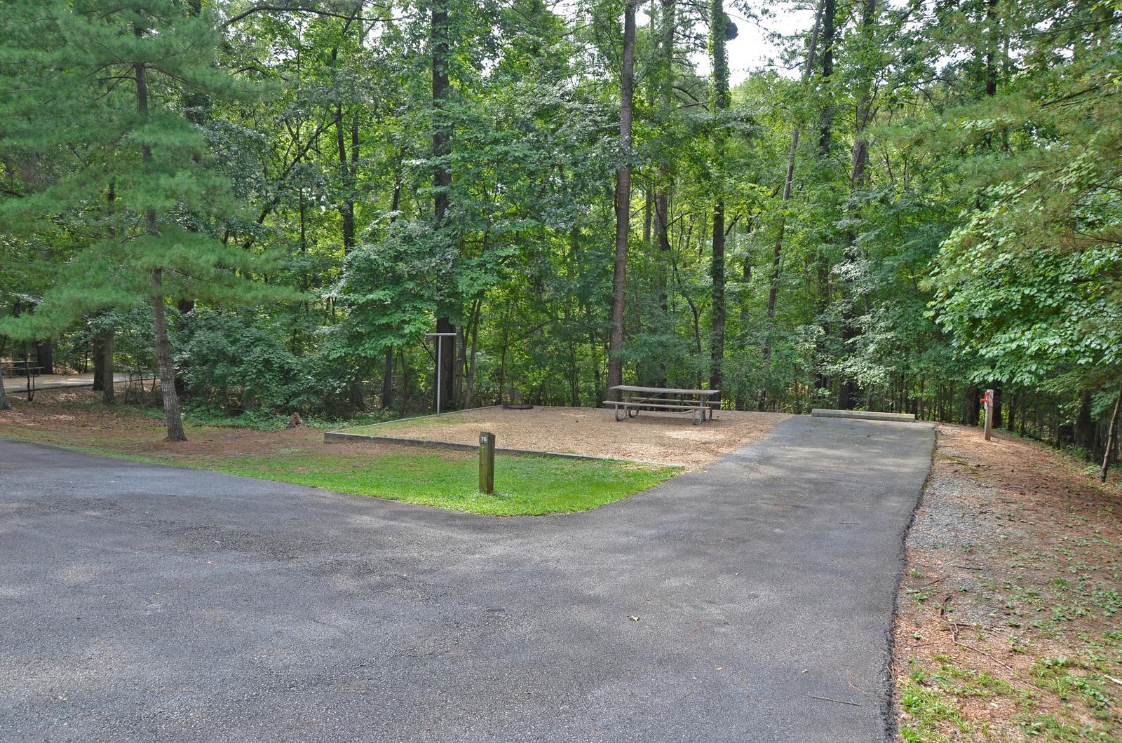 McKinney Campground Site 76