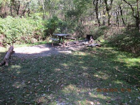 Loft Mountain Campground - Site 39Picnic table and fire pit on campsite