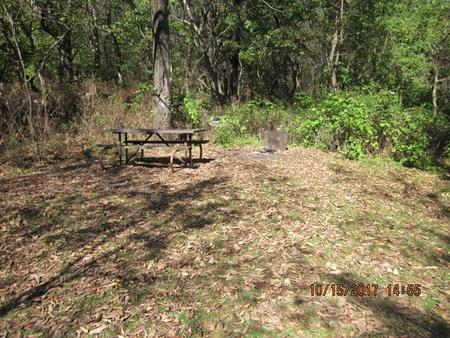 Loft Mountain Campground - Site 42Picnic table and fire pit on campsite
