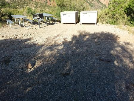 Bear boxes and picnic tables at site with open area in frontBear boxes and picnic tables