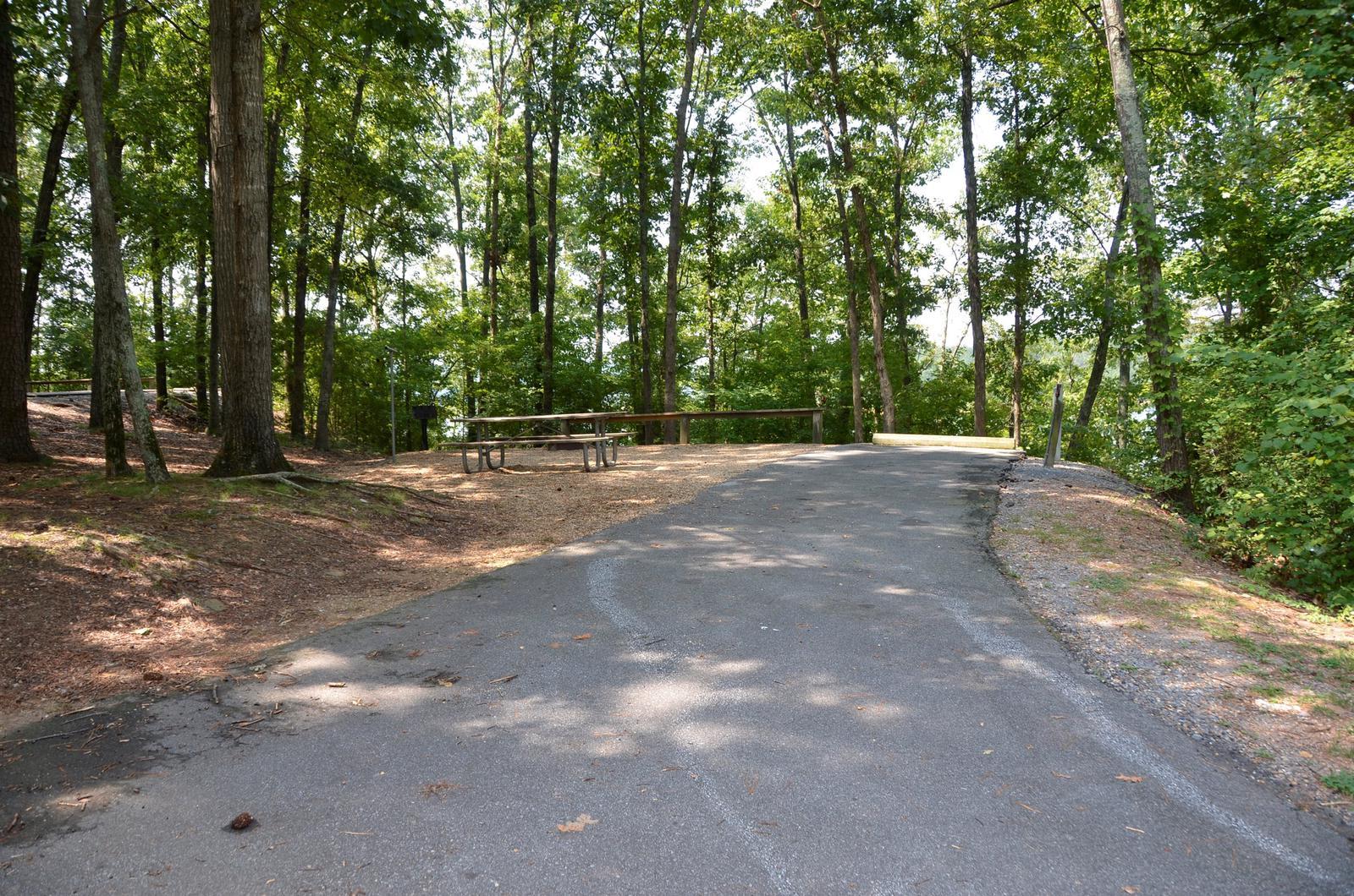 McKinney Campground Site 91