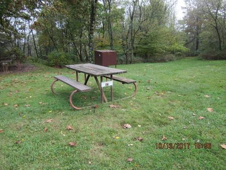 Loft Mountain Campground - Site 47Picnic table, food storage locker, and fire pit on campsite