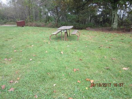 Loft Mountain Campground - Site 48Picnic table, food storage locker, and fire pit on campsite