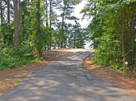McKinney Campground Site 97