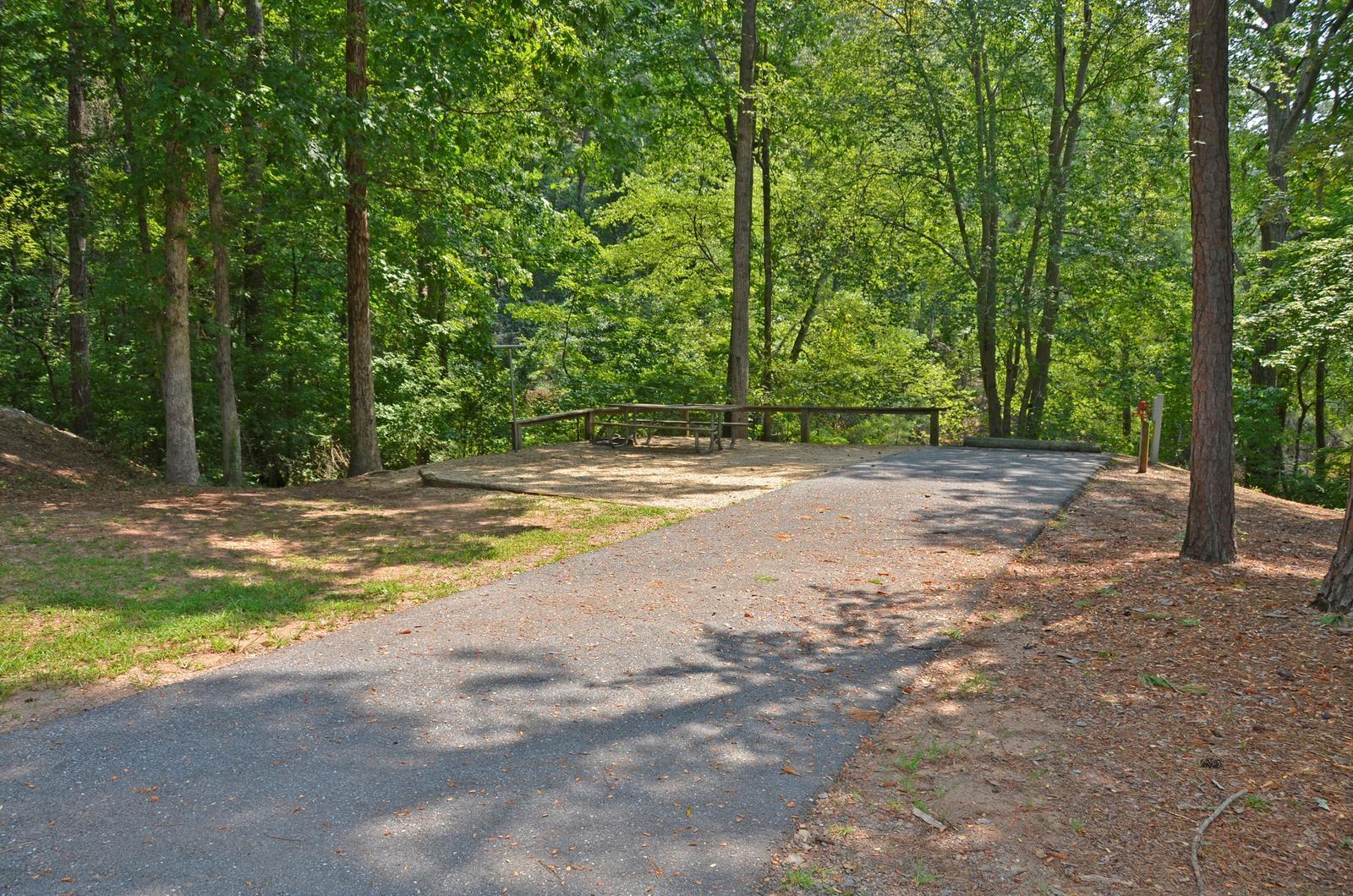 McKinney Campground Site 100