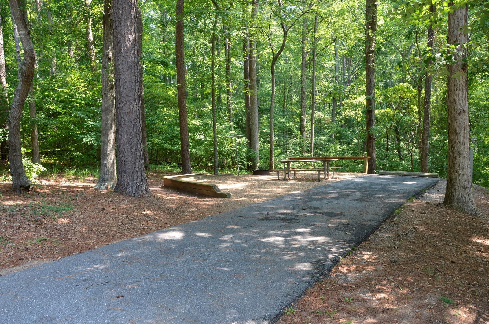 McKinney Campground Site 101
