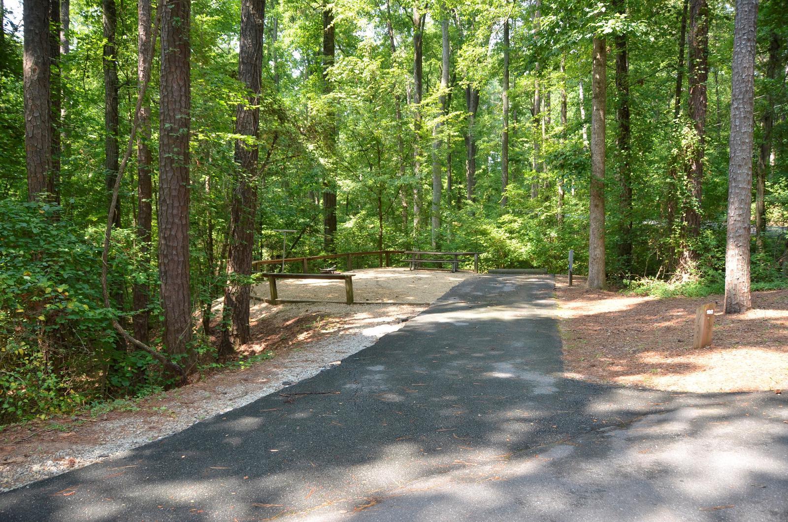 McKinney Campground Site 102
