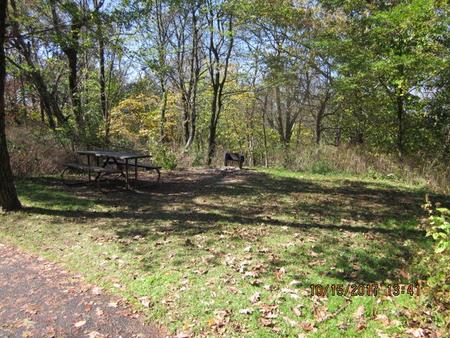 Loft Mountain Campground - Site A53Picnic table and fire pit on campsite