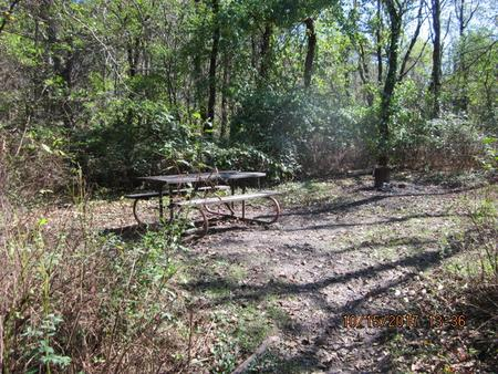 Loft Mountain Campground - Site A54Picnic table and fire pit on campsite