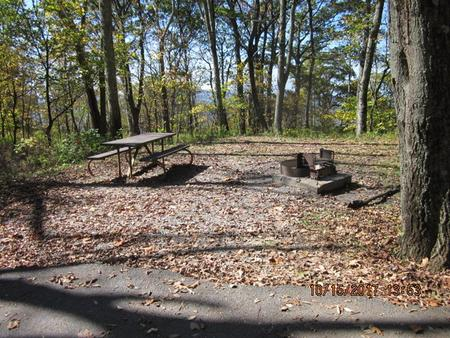 Loft Mountain Campground - Site A56Picnic table and fire pit on campsite