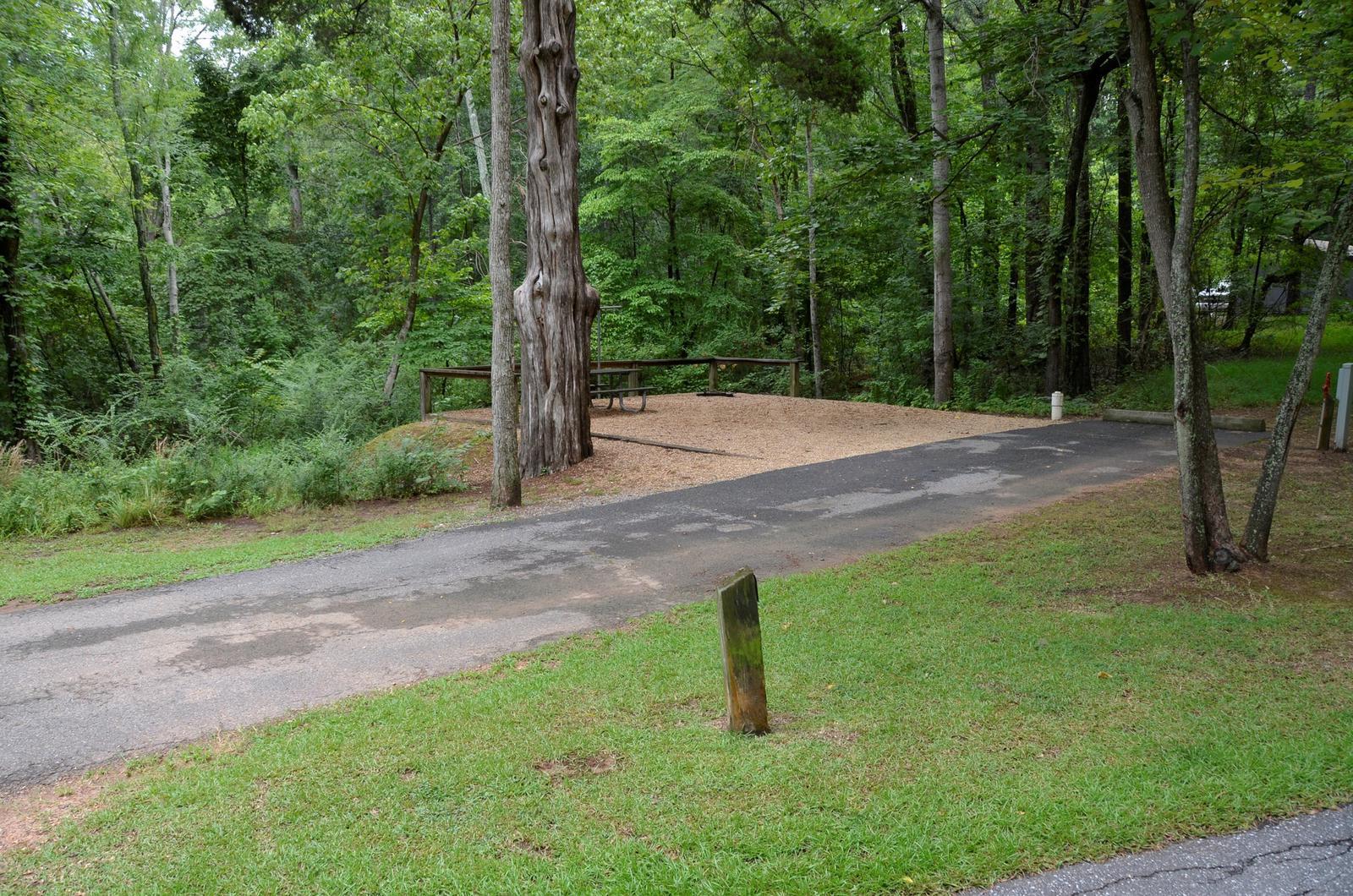 McKinney Campground Site 105