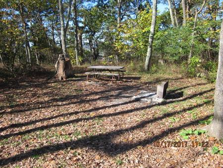 Loft Mountain Campground - Site A61Picnic table and fire pit on campsite