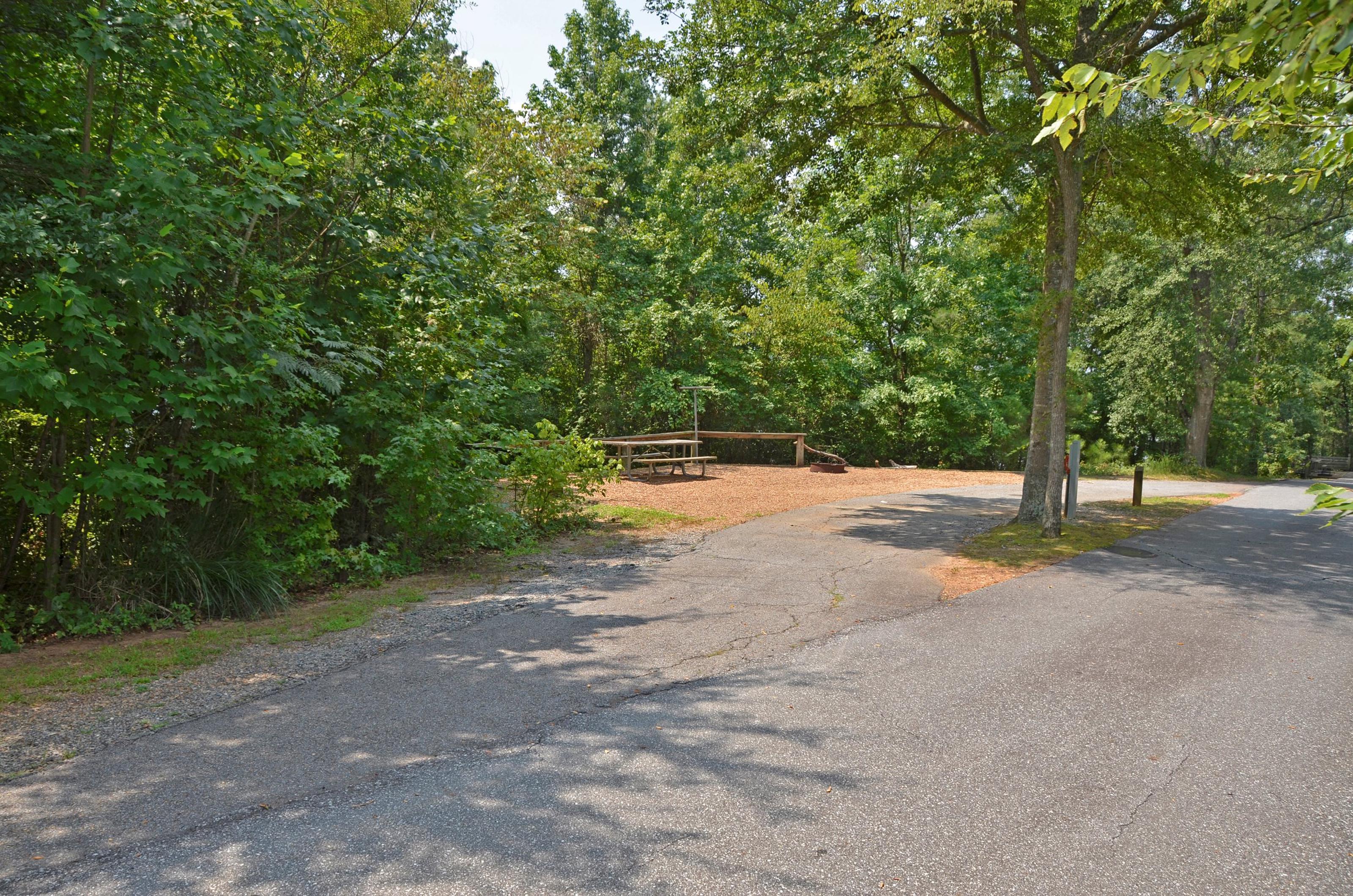 McKinney Campground Site 117
