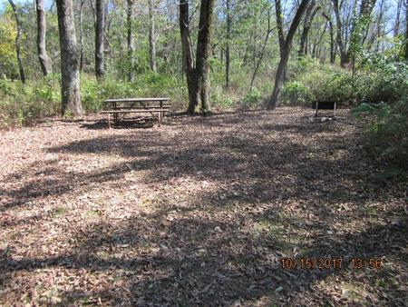 Loft Mountain Campground Site A61Picnic table and fire pit on campsite