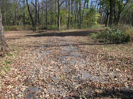 Loft Mountain Campground - Site A63Site driveway