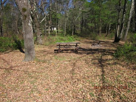 Loft Mountain Campground Site A65Picnic table and fire pit on campsite