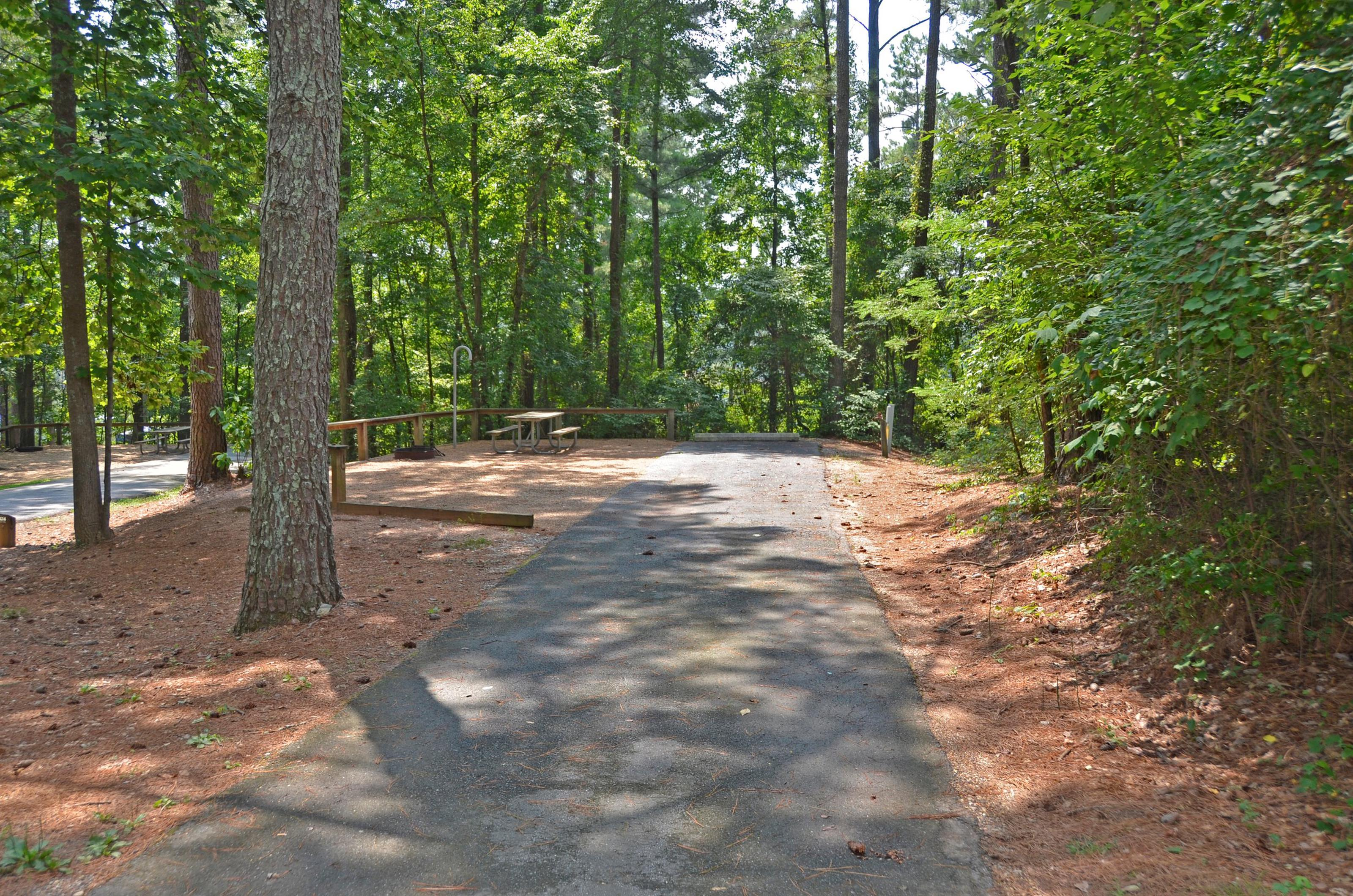 McKinney Campground Site 135