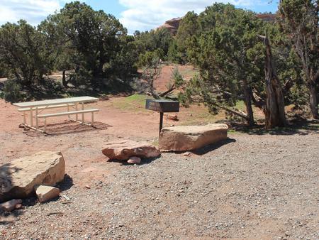 Loop A Site 6