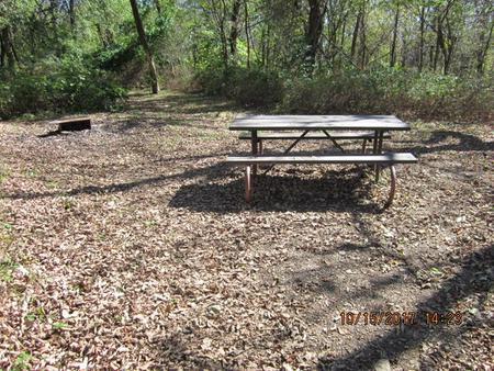 Loft Mountain Campground Site A70Picnic table and fire pit on campsite