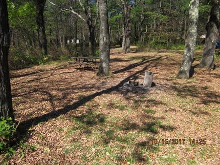 Loft Mountain Campground Site A71Picnic table and fire pit on campsite