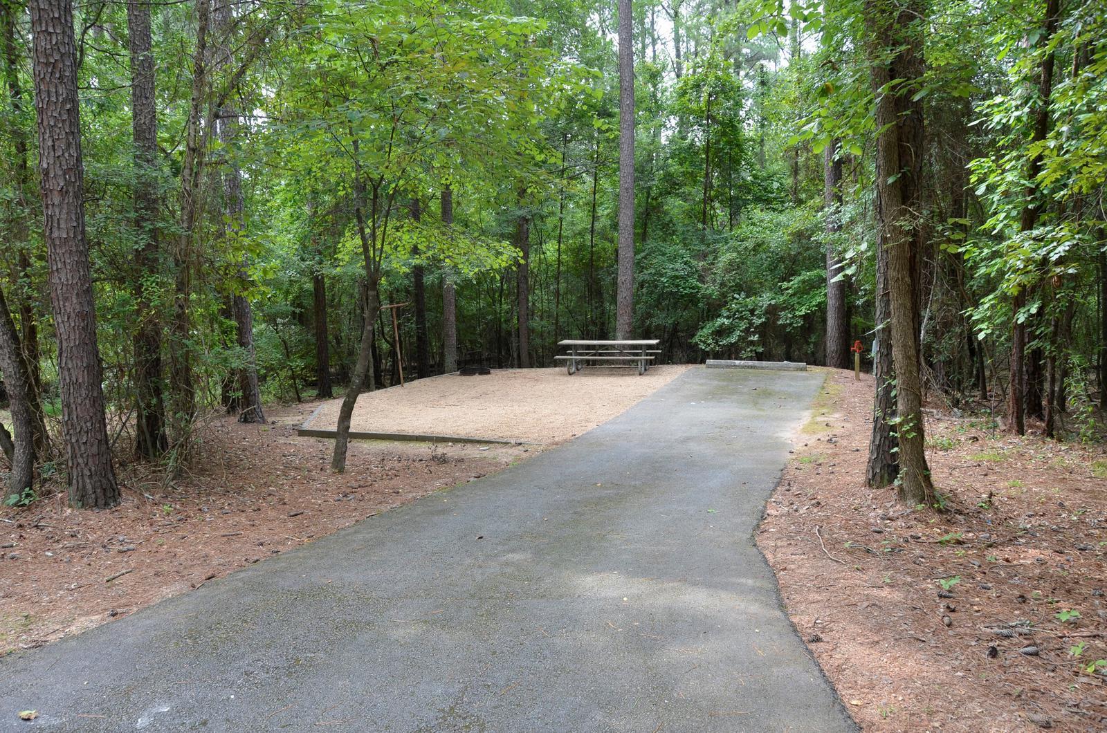 McKinney Campground Site 63