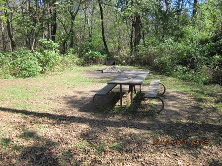 Loft Mountain Campground Site - A72 Picnic table and fire pit on campsite