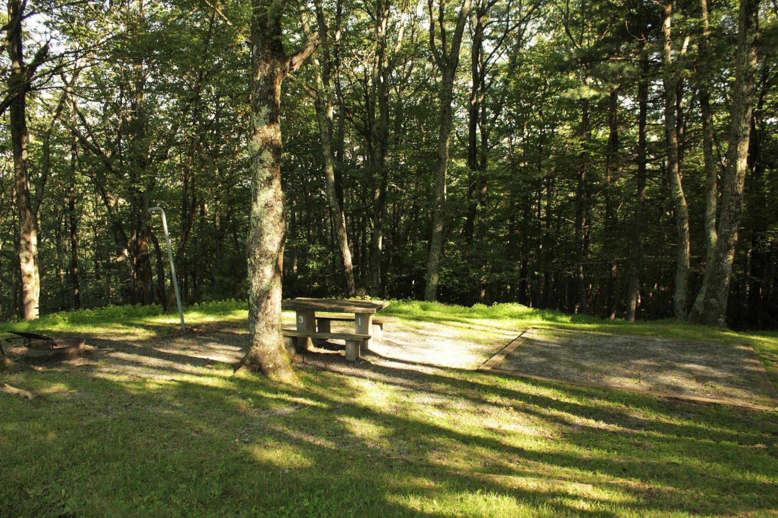 B31 Tent Site Photo