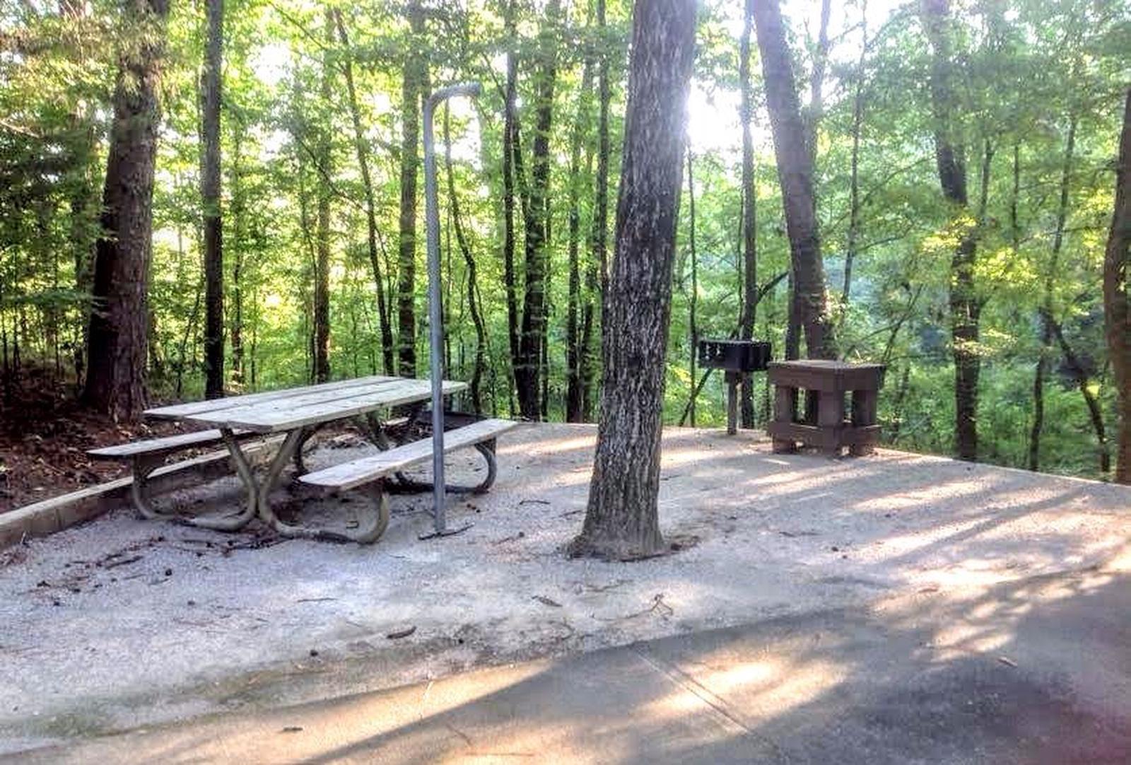 Deerlick Creek Campsite 3 Picnic AreaSite #3 Picnic Area
