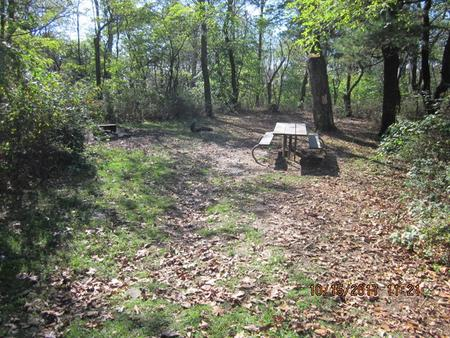 Loft Mountain Campground Site A75Picnic table and fire pit on campsite