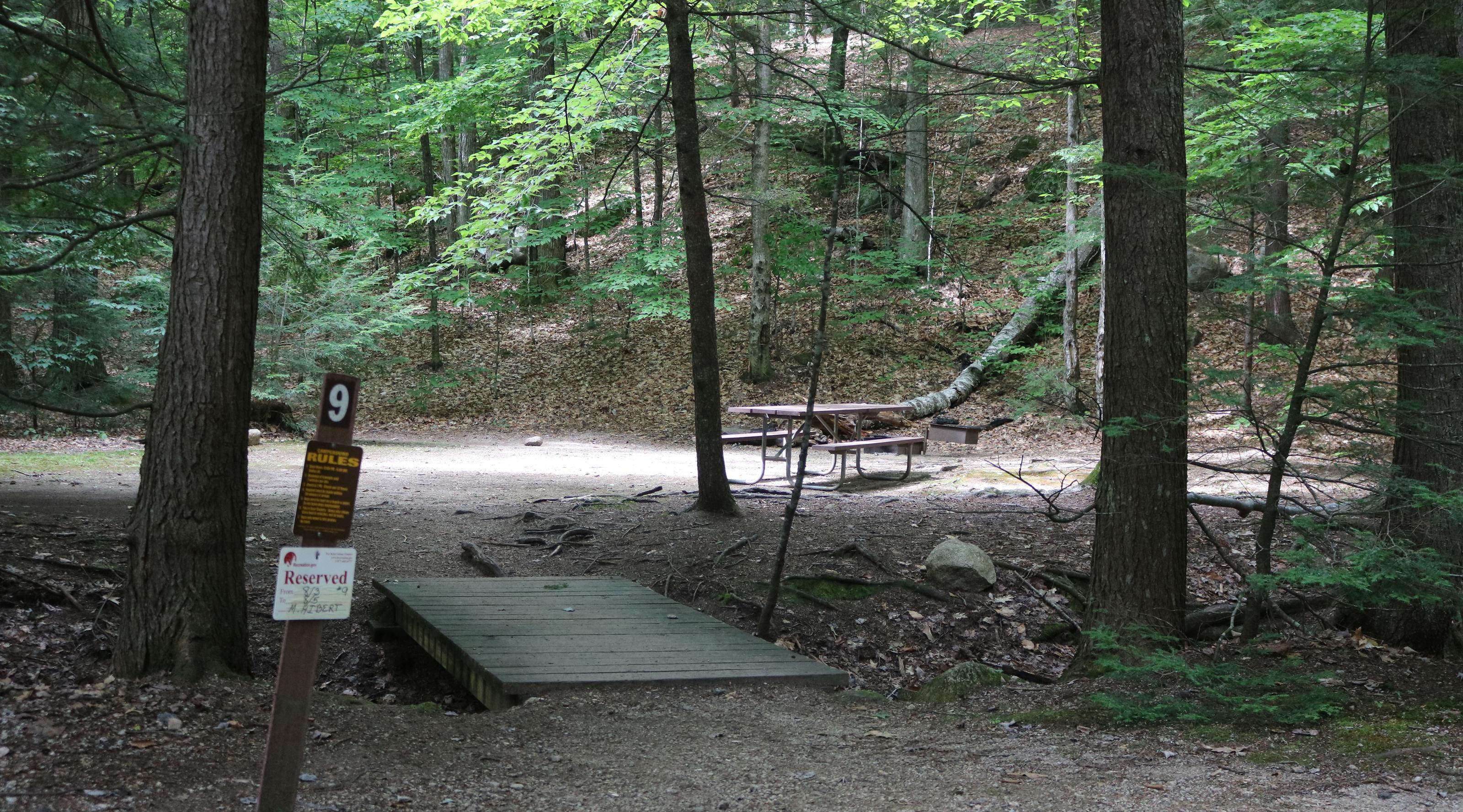 White Ledge CampsiteSite 9 at White Ledge Campground