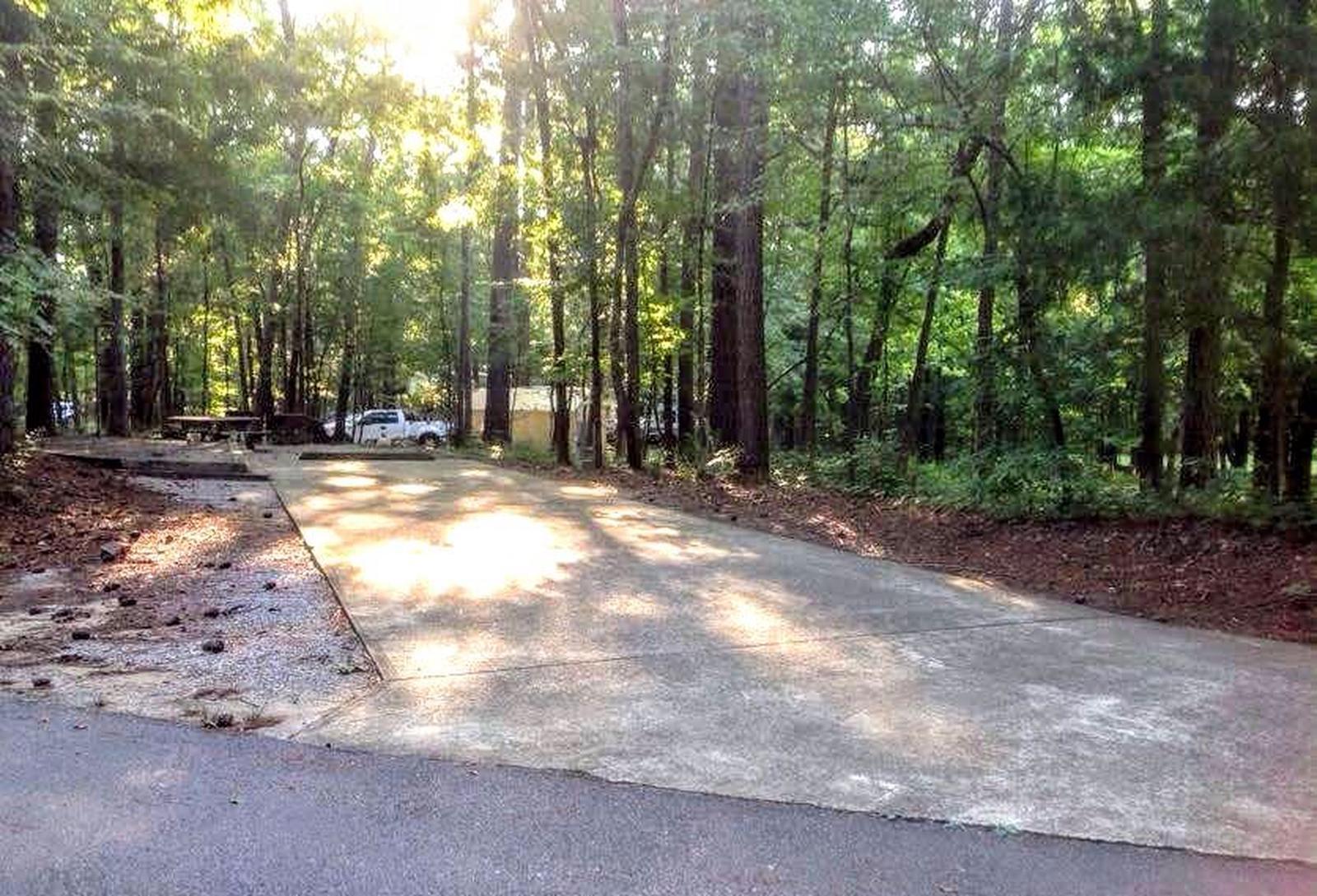 Deerlick Creek Campsite 10 Pad