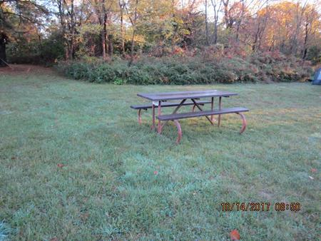 Loft Mountain Campground - Site A80Picnic table on campsite
