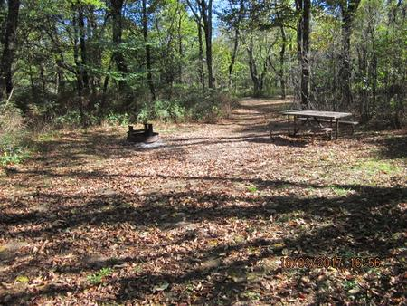 Loft Mountain Campground Site B84Picnic table and fire pit on campsite