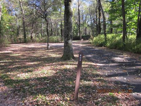 Loft Mountain Campground - Site B85Site post and driveway