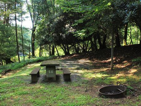 B56 Tent Site Photo