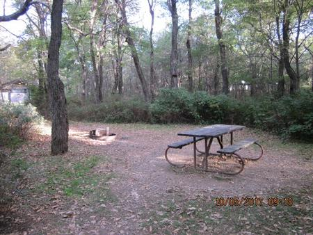 Loft Mountain Campground Site B89Picnic table and fire pit on campsite