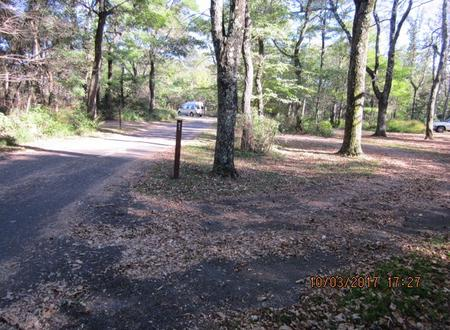 Loft Mountain Campground - Site B90Site post and driveway