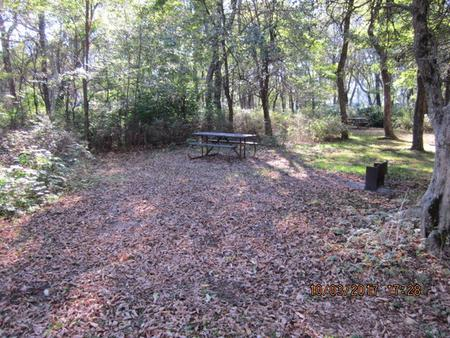 Loft Mountain Campground Site B90Picnic table and fire pit on campsite
