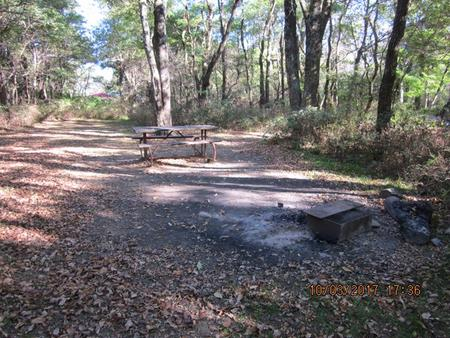 Loft Mountain Campground Site B91Picnic table and fire pit on campsite