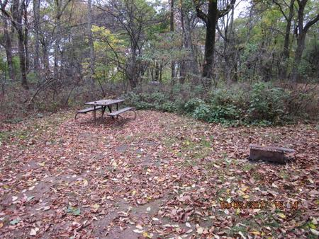 Loft Mountain Campground Site C93Picnic table and fire pit on campsite
