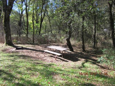 Loft Mountain Campground Site C94Picnic table and fire pit on campsite