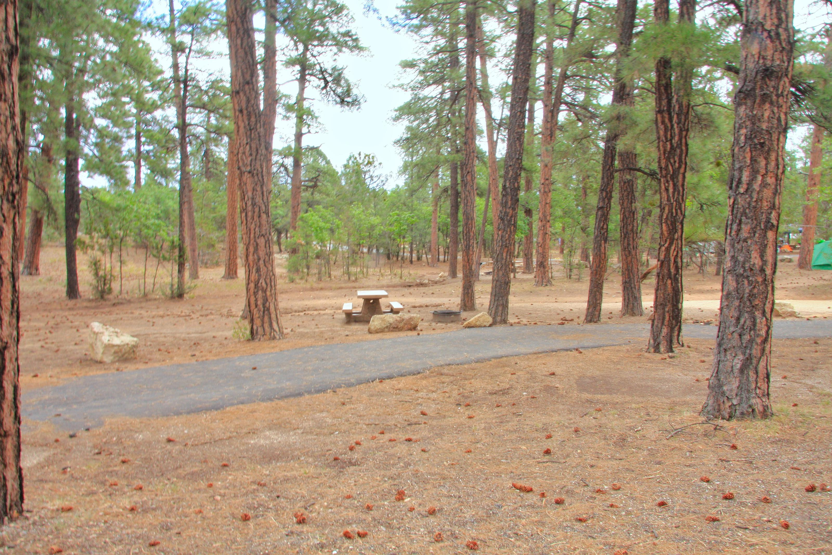 Parking spot, fire pit, and picnic table, Mather CampgroundThe parking spot, fire pit, and picnic table for Aspen Loop 4, Mather Campground
