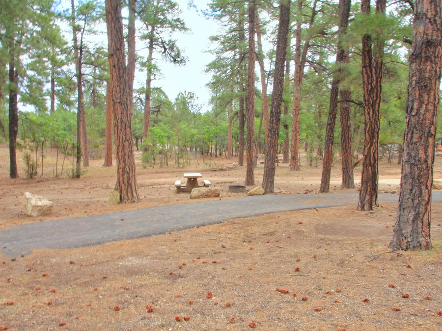 Parking spot, fire pit, and picnic table, Mather CampgroundThe parking spot, fire pit and picnic table for Aspen Loop 4, Mather Campground