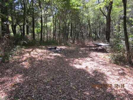 Loft Mountain Campground Site C96Picnic table and fire pit on campsite
