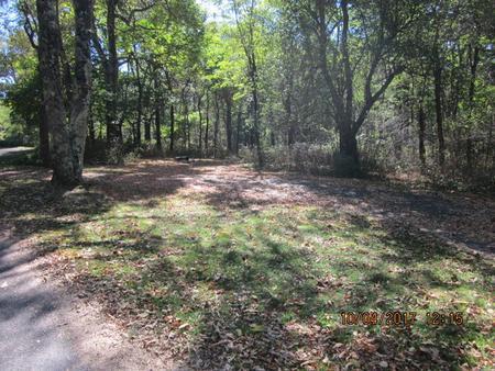 Loft Mountain Campground - Site C96Site C96