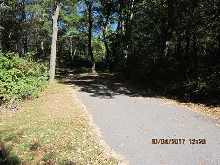 Loft Mountain Campground - Site C97Site driveway