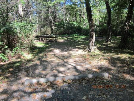 Loft Mountain Campground Site C97Picnic table and fire pit on campsite